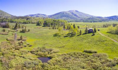 Routt County Single Family Home Under Contract: 27650 Hurd View Lane