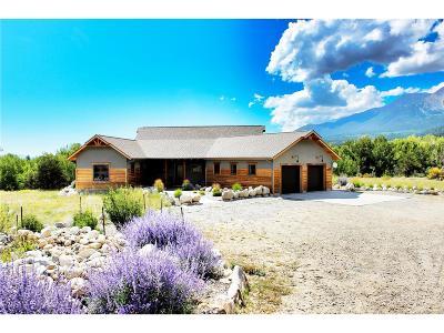 Buena Vista Single Family Home Under Contract: 17621 Reserve Drive