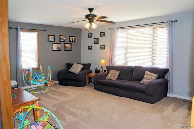 Lochbuie Single Family Home Under Contract: 243 Elm Street