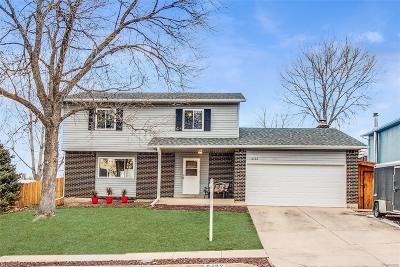 Single Family Home Under Contract: 6762 Beech Drive