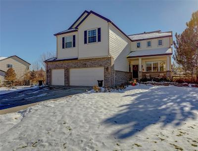 Littleton Single Family Home Under Contract: 7067 Lionshead Parkway