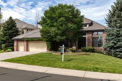 Highlands Ranch, Lone Tree Single Family Home Active: 9538 East Hidden Hill Lane