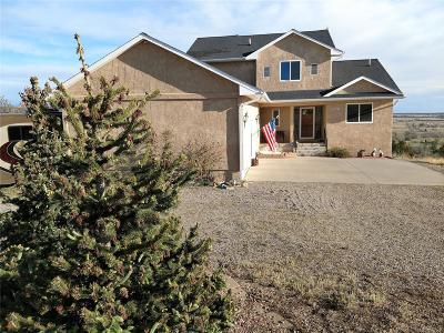 Colorado City Single Family Home Active: 4577 Cummings Street
