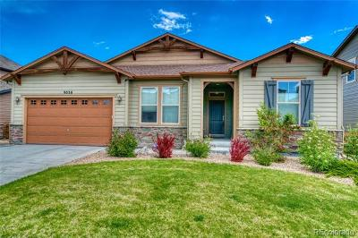 Arvada Single Family Home Active: 9536 Nile Way