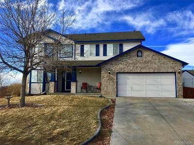 Adams County Single Family Home Active: 11686 River Run Parkway