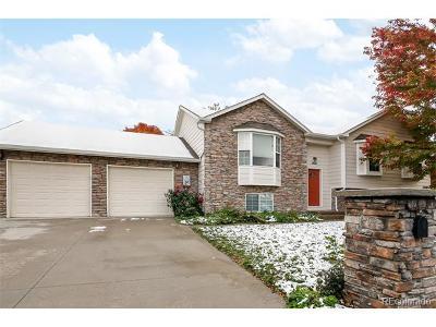 Longmont Single Family Home Active: 1426 Cinnamon Street