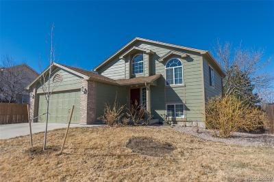Castle Rock Single Family Home Under Contract: 5257 Spruce Avenue