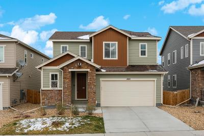 Castle Rock Single Family Home Under Contract: 4033 Trail Stone Circle