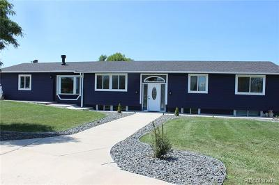 Adams County Single Family Home Active: 13727 Race Court