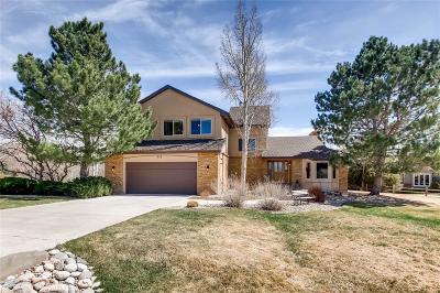 Colorado Springs Single Family Home Active: 225 Palm Springs Drive