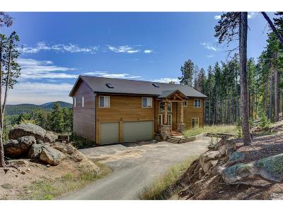 Evergreen Single Family Home Under Contract: 54 Creek Trail