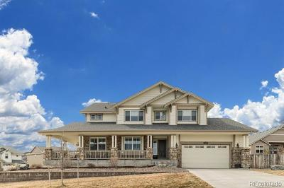 Castle Rock Single Family Home Active: 2714 Mashie Circle