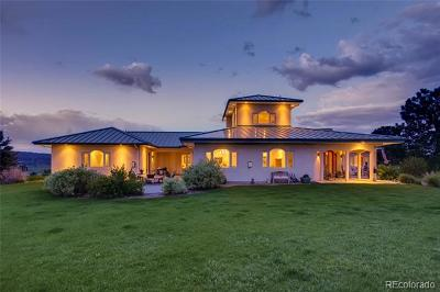 Castle Rock Single Family Home Active: 3250 Via Margarita
