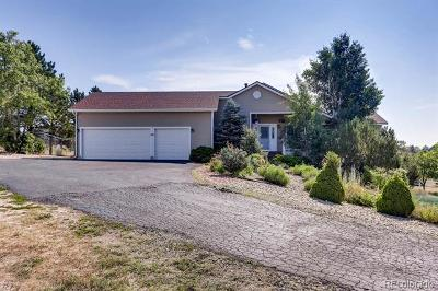 Elbert County Single Family Home Active: 3639 Pine Meadow Avenue