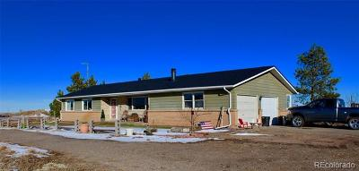 Arapahoe County Single Family Home Active: 471 East County Road 10