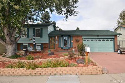 Colorado Springs Single Family Home Active: 5050 Filarees Circle