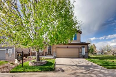 Parker Single Family Home Under Contract: 6693 Cherry Creek Drive