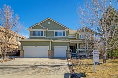 Douglas County Single Family Home Active: 9450 South Aspen Hill Way