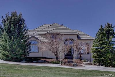 Castle Rock Single Family Home Active: 5966 Jade Court