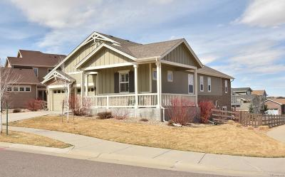 Southshore Single Family Home Active: 6846 South Quantock Way