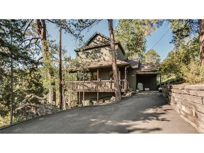 Evergreen Single Family Home Under Contract: 6887 South Brook Forest Road