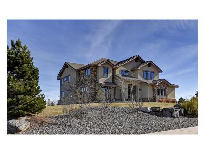 Castle Rock Single Family Home Active: 6379 Tremolite Drive