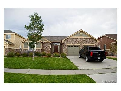 Arapahoe County Single Family Home Active: 413 North De Gaulle Court