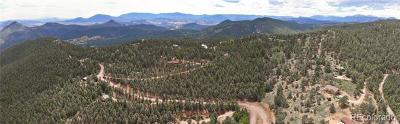 Conifer Residential Lots & Land Active: 13745 Shiloh Drive