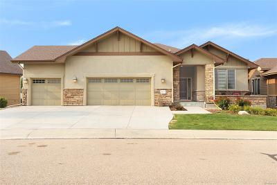 Windsor Single Family Home Active: 6017 Southern Hills Drive