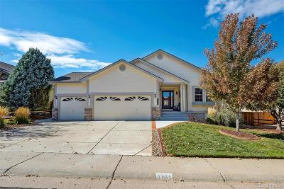 Highlands Ranch Single Family Home Active: 9739 Westbury Way