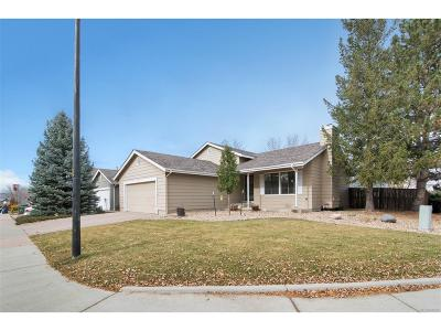 Highlands Ranch Single Family Home Under Contract: 393 Southpark Road