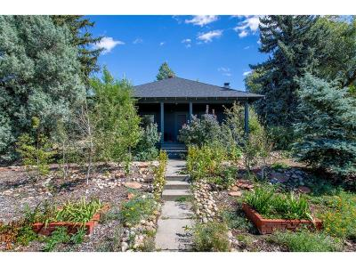 Castle Rock Single Family Home Under Contract: 418 Lewis Street
