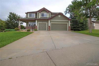Parker Single Family Home Active: 16121 Crestrock Court