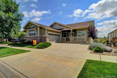 Heritage Eagle Bend Single Family Home Under Contract: 8162 South Quatar Circle