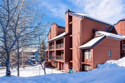 Steamboat Springs CO Condo/Townhouse Under Contract: $300,000