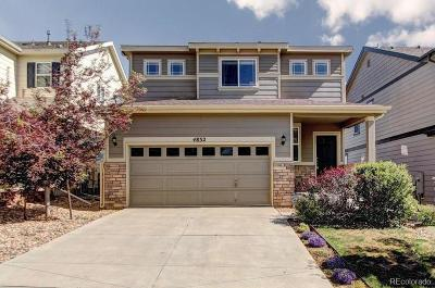 Single Family Home Active: 4832 South Picadilly Court