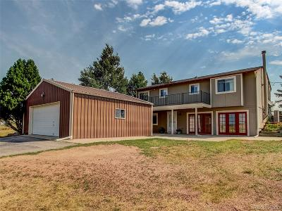 Elbert County Single Family Home Active: 3021 Pikes Peak Road