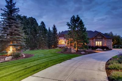 Parker Single Family Home Active: 5296 Sage Thrasher Road