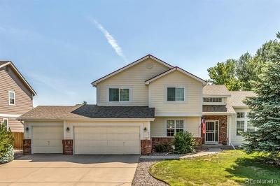 Parker Single Family Home Active: 10914 Benton Place