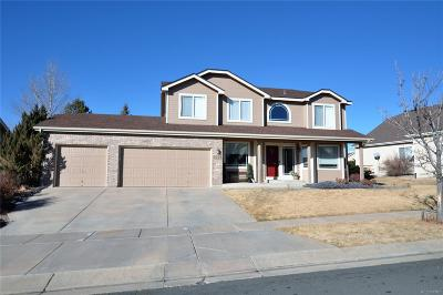 Colorado Springs Single Family Home Under Contract: 1036 Hillside Oaks Place