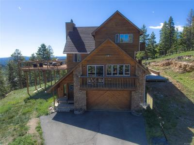 Evergreen Single Family Home Active: 45 Forest Drive
