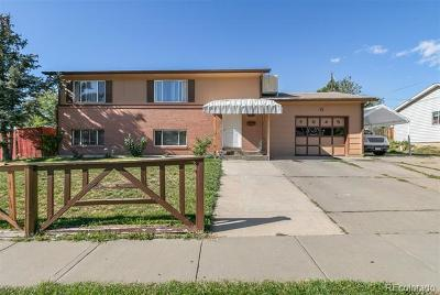 Single Family Home Active: 7845 Conifer Road