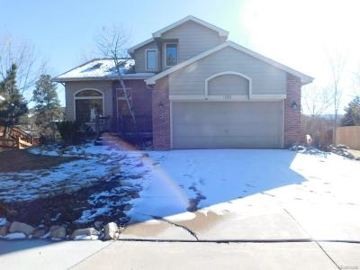 Castle Rock Single Family Home Active: 2066 Foxfield Drive