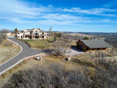 Castle Rock Single Family Home Under Contract: 1497 Colt Circle