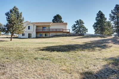 Douglas County Single Family Home Under Contract: 13940 Double Tree Trail