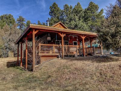 Elbert CO Single Family Home Under Contract: $389,000