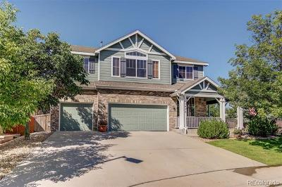 Vista Ridge Single Family Home Active: 1456 Eagleview Place