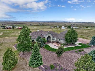 Colorado Springs Single Family Home Active: 18090 Bar X Road