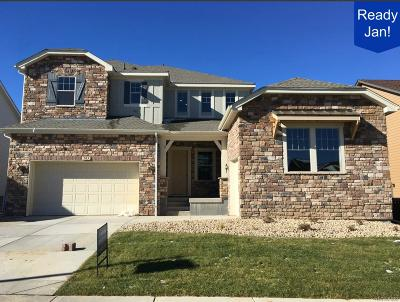 Boulder County Single Family Home Active: 703 Gilpin Circle