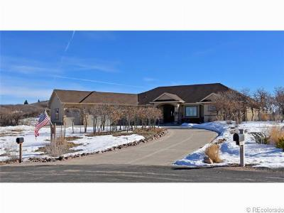 Castle Rock CO Single Family Home Sold: $875,000